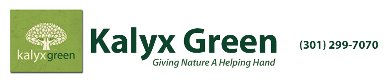 Kalyx Green Landscaping